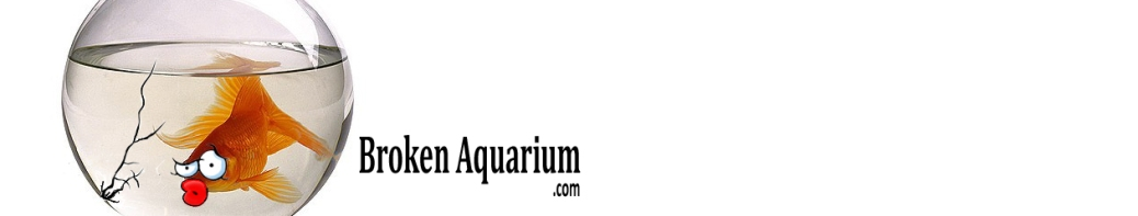 best aquarium advice, broken aquairum
