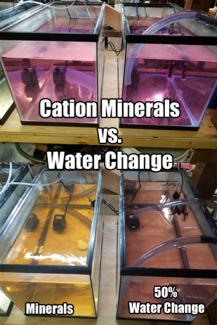 aquarium minerals, water changes